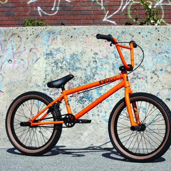 evolve orange